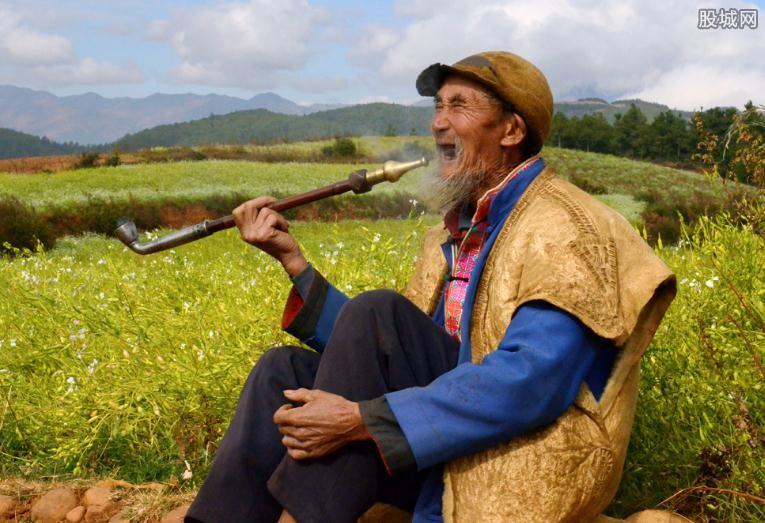 2017年农村养老保险新政策