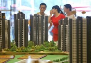 深圳租套房均价上涨五千 环比增长超三成