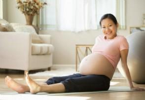 试用期怀孕遭辞退 试用期被无故辞退怎么赔偿?