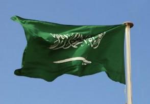沙特工资多少钱一个月最低工资仅有这个数