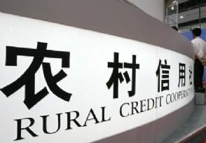 农村信用社有什么贷款常见的有两种方式