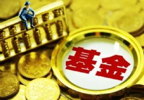 指数基金有哪些投资者应该怎么买?