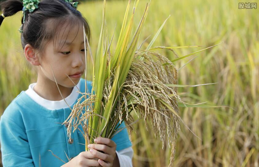 收彩礼_现在农村干什么赚钱 种植或养殖都有发展前景-股城理财