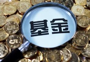 基金的净值和估值是什么意思应该怎么看?