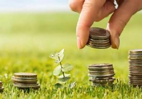 什么是增强指数基金 理财新手应该怎么挑选?