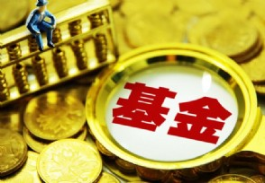 股票型基金新手能买吗投资风险大吗?